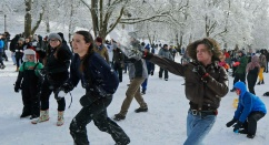 Американка пригласила соседей поиграть в снежки, но на снежную битву пришло 3 тысячи человек