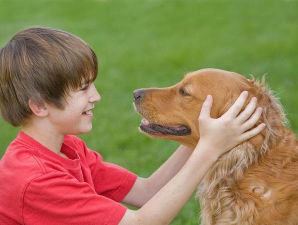 Учёные нашли способ научить собак разговаривать