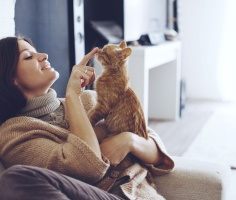Учёные выяснили, что кошки знают собственные имена