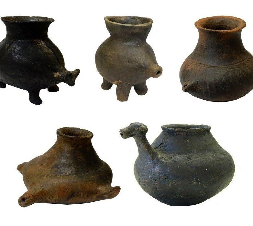 Археологи обнаружили детские бутылочки каменного века