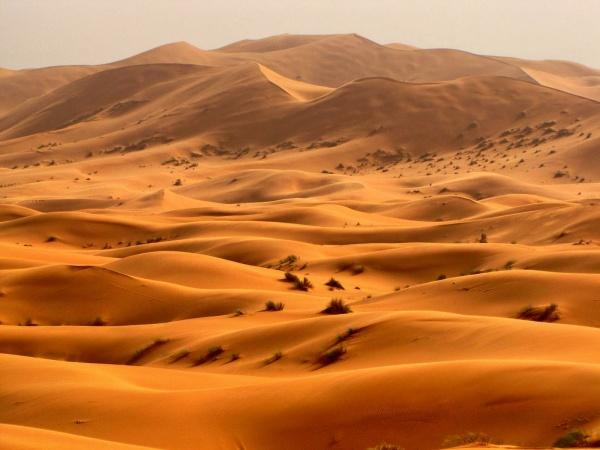 «О природе и погоде»: Пустыни