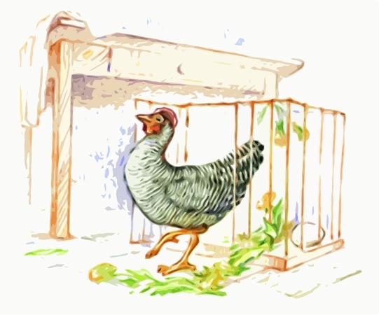 Слушайте радиоспектакль «Эмилия – городская курица»
