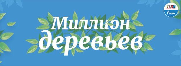 Бархат амурский, обыкновенная ель, дуб... Что выбрали москвичи для озеленения своих дворов?