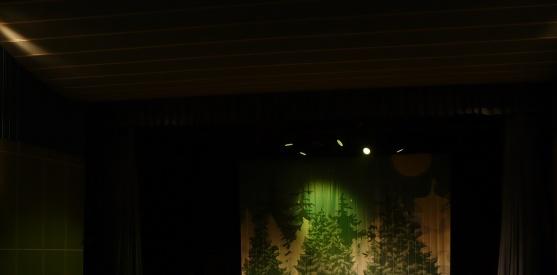 27 декабря 2013 – 6 января 2014 – Ёлка Детского радио: Новогодние приключения Веснушки и Кипятоши в Самаре, Челябинске, Тольятти и Казани