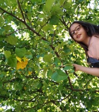 Я на приусадебном участке, около своей любимой яблони.