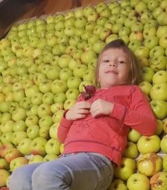 Первый хороший яблочный урожай на даче и его активный собиратель - Маша.