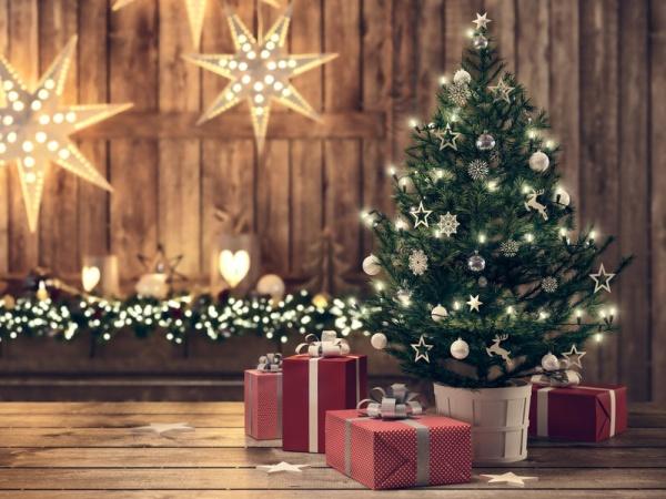 Жители каких городов России купили больше всего новогодних ёлок?