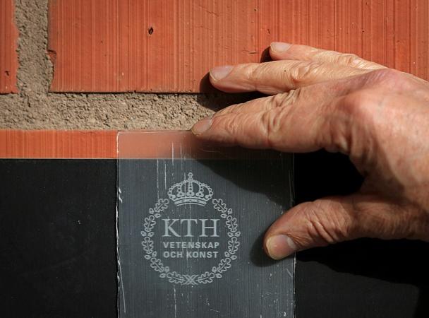 Шведские учёные изобрели прозрачную древесину