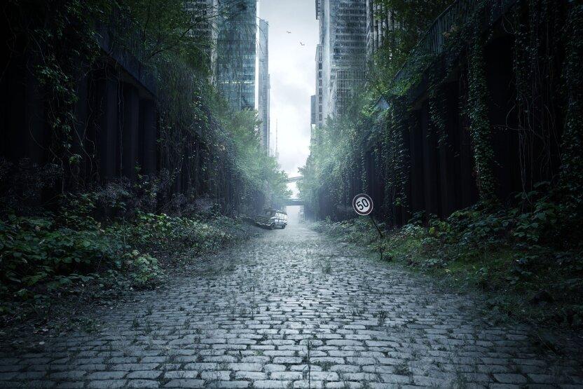 Что будет, если все люди на Земле вдруг исчезнут?