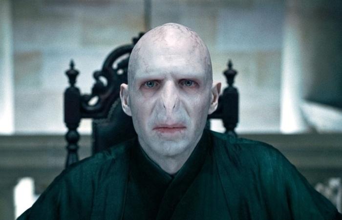 Дочь Волан-де-Морта будет героиней новой картины о Гарри Поттере