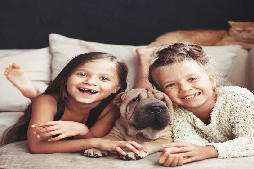 Собаки научились подражать речи своих хозяев