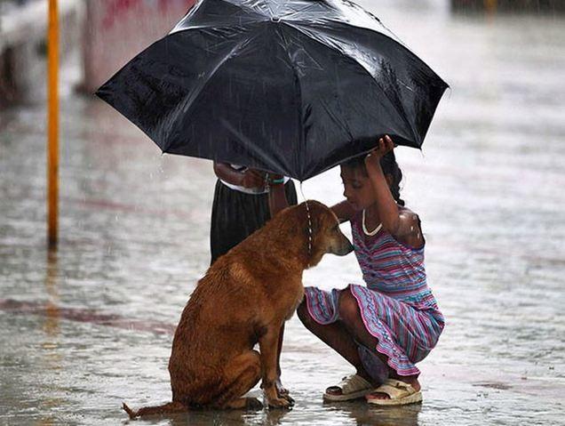 Самые добрые дети мира и их поступки - фото