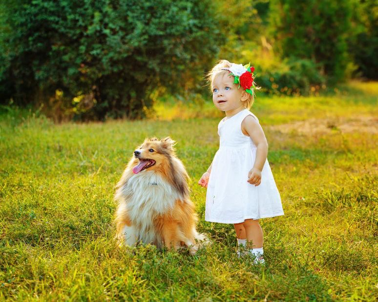 Лучшие породы собак  для детей! Кинологи рассказывают, как выбрать четвероного друга